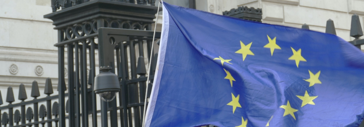 An EU flag in front of Downing Street